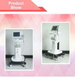 Anti-Wrinkle Hifu Weight Loss Beauty Machine con ODM/OEM/Ce (Fu4.5-2s)