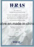 Steigende Metall SitzAbsperrschieber stamm ANSI-125/150