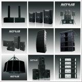 """Dual 10 a """" PRO linha audio sadia sistema da disposição (10 espertos)"""