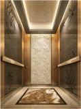 مسافر مصعد مصعد مرآة يحفر سيّد & [مرل] [أكسن] [هل-إكس-031]