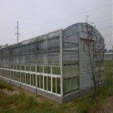 8mm Polycarbonat-Höhlung-landwirtschaftliches Gewächshaus-Blatt
