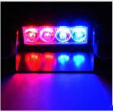 、フラッシュライトLED軽いの12V LED車点滅LED 4つのLED車のストロボのフラッシュライト