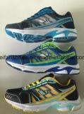 卸売のための人のスポーツの靴の運動靴のスニーカーの靴