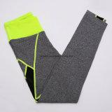 La ginnastica calda di forma fisica delle signore di vendita copre i pantaloni di yoga