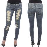 Frauen-Bleistift-Hose dehnt beiläufiges Denim-dünne Hosen-Blue Jeans aus
