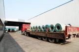 Enroulement en acier de PPGI approprié au marché européen