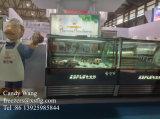 Congélateurs italiens de cas d'exposition de crème glacée glacée de Gelato
