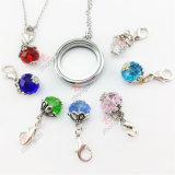 Wholesale 30mm Memory Floating Silver Plain Glass Lockets for Necklace (FL29)