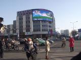 P16 imperméabilisent la publicité d'écran d'Afficheur LED de Digitals