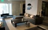 L sofà sezionale del tessuto di tela dell'angolo di figura con il poggiapiedi (FS-020)