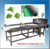 Tipo Hobbing industrial cortador vegetal Gd-586 da capacidade elevada