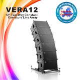 """Nueva 12 """" Vera12 línea de Skytone altavoz del sistema de sonido de la demostración viva del arsenal"""