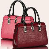 2017 sacchetti lussuosi Sy7743 di stili delle donne di modo del Tote classico variopinto della borsa