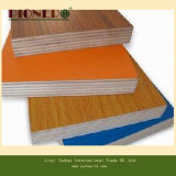 E0 Glue를 가진 Furniture를 위한 너도밤나무 Melamine Plywood