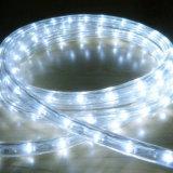 IP65 impermeabilizzano la vendita diretta dell'indicatore luminoso della corda di Y2 LED con CE RoHS