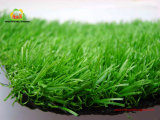 Scool che modific il terrenoare erba sintetica per la terra del gioco
