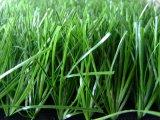 Kunstmatig Gras, het Gras van de Voetbal, Sporten, Asrtoturf (MD012)