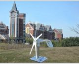 5 Turbine van de Molen van de Wind van bladen de Horizontale met Ce- Certificaat