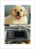 Handcer-anerkannte medizinische Ausrüstung VeterinärUltrsound Scanner-System