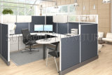 Modernes Modular Glass und Fabric Screen Partition Office Cubicles (SZ-WS514)