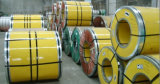 Специальная химическая промышленность от Китая продала плиту нержавеющей стали 321