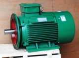 IEC Yd Deux Asynchronous Motor Speed ​​(IP55 F)