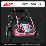 가스 새로운 2 시트를 모래 언덕 경주하는 200cc는 Kart 간다