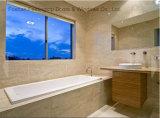 집 디자인 최고 질 중국은 만들었다 알루미늄 금속 Windows (FT-W80)를