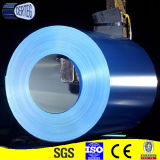 Dx51D+Z100 Painted Galvanized Steel Sheet em Coil