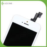 Gemäßigter Preis-Berufsfabrik-Abwechslung LCD-Bildschirm für iPhone 5 Note