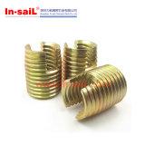 Constructeur en acier de garniture intérieure filetée d'Ensat de zinc de fournisseur chaud de vente de la Chine