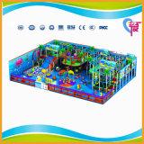 De Goedkope Grote Speelplaats van uitstekende kwaliteit van de Kinderen van het Pretpark Binnen (a-15241)