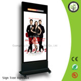Display Floor Standing LED Lightbox Double Sides Display Vertical