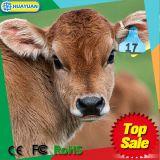 Marque d'oreille animale d'IDENTIFICATION RF de l'impression de numéro de série EM4305 pour le rail de bétail