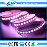 luz de tira flexible de 38.4W SMD5050 120LEDs DC12V RGBW LED