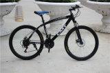 Дешевый популярный Bike горы дороги углерода (ly-a-48)