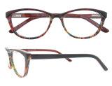 Het hete Verkopende Optische Frame Kleurrijke Eyewear van de Acetaat van de Vrouwen van de Manier