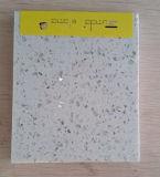 كبيرة بيضاء مرآة نمو مرج حجارة [كونترتوب]