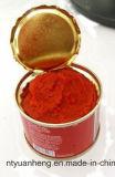 Vegetal enlatado tomate do molho do tomate da ketchup
