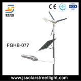 hybrides Straßenlaternesolar des Wind-40W!