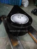 Frizione di Sprag unidirezionale della frizione della camma BS200HS/160HS/220HS/250HS