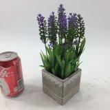 かわいい正方形の陶磁器の鉢植えな人工的なラベンダーのプラント