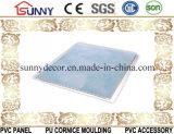 Panneaux faux en plastique de PVC d'impression de transfert de panneau de PVC de plafond