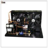 Unidad de condensación de la refrigeración del condensador de Bitzer Refrigerater del cambiador de calor para el congelador