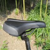 Nueva bicicleta eléctrica diseñada de la montaña (RSEB-401)