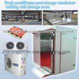 Sitio de conservación en cámara frigorífica del almacén de almacenaje de la carne que recorre