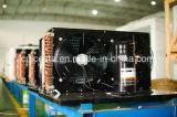 Блок Copeland охлаженный воздухом Semi герметичный конденсируя
