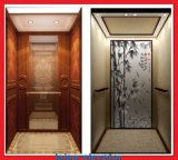 Elevatore verde dell'elevatore della casa di protezione dell'ambiente con la macchina Roomless
