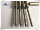 China Supplier Hardware Fittings Gas Spring para barco / iate