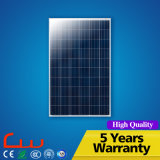 40W 7m Poly Panel lampe extérieure LED Solar Street Light